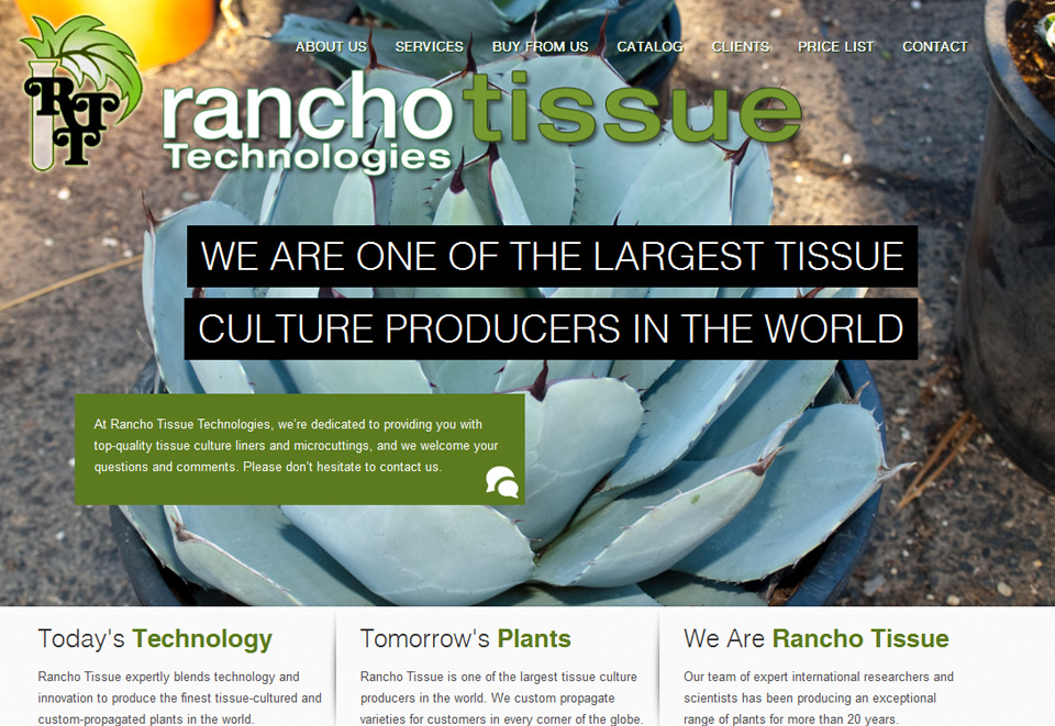 Rancho Tissue